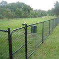 Chainwire Domestic Fencing - The Fence Place